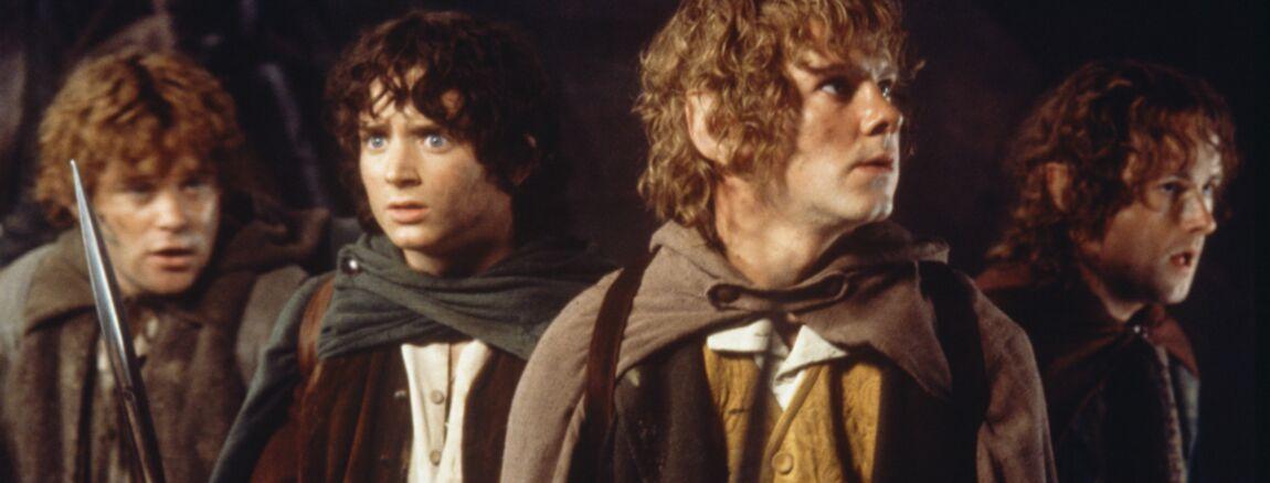 En liquidation plus près de nouvelle sélection Le Seigneur des anneaux (Amazon Prime Video) : casting ...