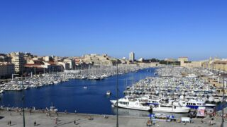 Improbable : une baleine se retrouve piégée dans le Vieux-Port de Marseille !