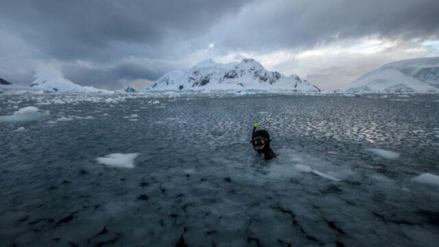 Un monde de glace, plongée en Antarctique, à la rentrée dans Thalassa