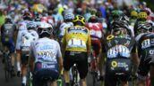 Tout ce que vous avez toujours voulu savoir sur le Tour de France