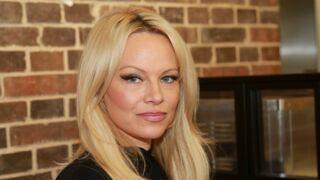 Les invités d'On n'est pas couché (France 2) : Pamela Anderson, Fréro Delavega, Benabar… (ONPC)
