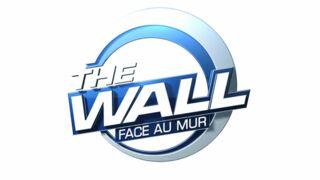 The Wall : TF1 lance un appel à candidatures pour son nouveau jeu