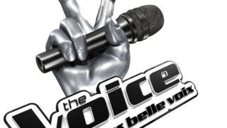 The Voice bientôt en jeu vidéo !