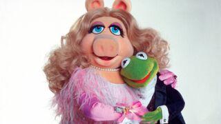 Alerte info : Kermit et Peggy du Muppet Show se séparent !