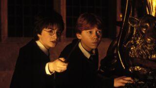 Audiences TV : Harry Potter, la recette magique de TF1