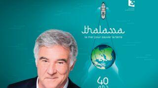 """Georges Pernoud (France 3) : """"Je n'ai pas l'intention d'arrêter Thalassa"""""""