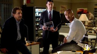 Audiences : Esprits criminels (TF1) et L'Amour est dans le pré (M6) à touche-touche