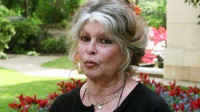 Bon anniversaire Brigitte Bardot
