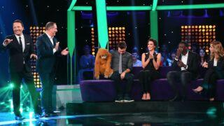 Audiences : Stars sous hypnose au top, Thalassa fait flop