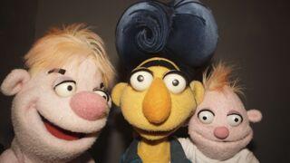 """""""Puppets ! Le grand show des marionnettes"""" (TF1) a son jury, découvrez-le"""