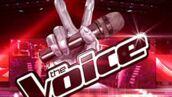 Audiences sociales : The Voice (encore) en baisse