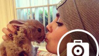 Cara Delevingne : ses meilleures photos Instagram (20 PHOTOS)
