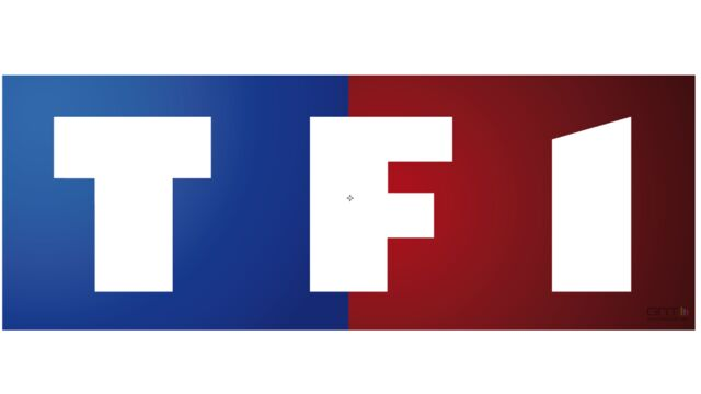 Audiences mensuelles : TF1 redresse la barre, France 2 au plus bas