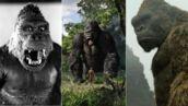 Kong - Skull island (TF1) : les King Kong les plus célèbres du cinéma ! (PHOTOS)