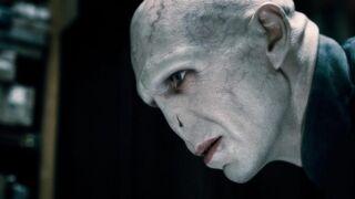 """""""Voldemort : les origines de l'héritier"""" : le premier teaser du film réalisé par des fans de Harry Potter (VIDEO)"""