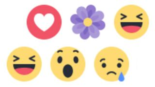 Facebook : pourquoi une fleur est-elle apparue dans les réactions ?