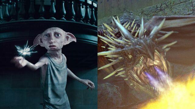 Harry Potter : Elfes, dragons, troll... Redécouvrez les créatures magiques de la saga (49 PHOTOS)