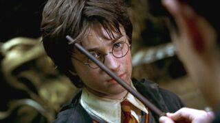Les Animaux fantastiques : le tournage du spin-off d'Harry Potter a commencé !