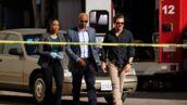 L'Arme fatale (TF1) : qui sont les acteurs de la série ?