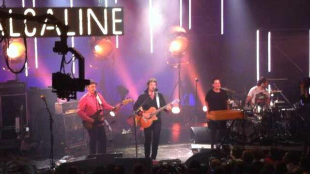 France 2 : Vanessa Paradis en concert pour Alcaline en décembre ?