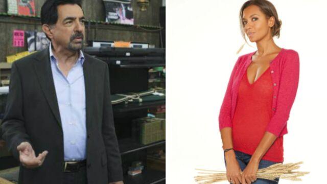TF1 et M6 au coude à coude avec Esprits criminels et L'amour est dans le pré