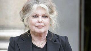 """Brigitte Bardot : """"Je souhaite que Marine Le Pen sauve la France"""""""