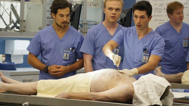 Audiences : Grey's Anatomy a démarré sa saison 12 en tête sur TF1, petit score pour Enora Malagré sur D8
