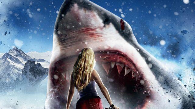 Sharknado et les films de requins les plus dingues (PHOTOS)