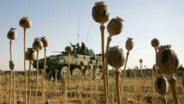 La Route de l'opium : un documentaire saisissant sur Arte