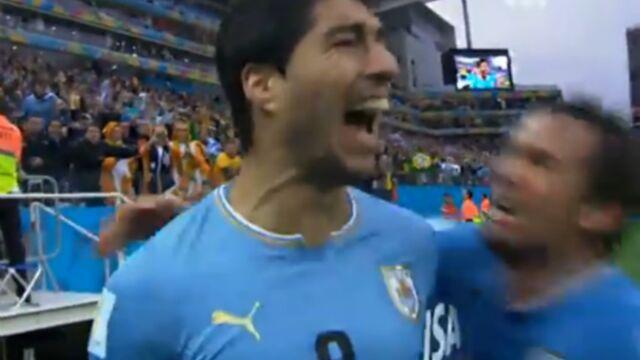 Le Mondial 2014 toujours au top sur TF1