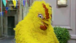 Plus belle la vie : qui est le poulet du Mistral ?