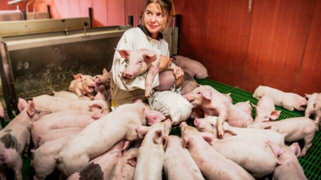 """Une vie de cochon (France 2) : une immersion édifiante de """"l'emmerdeuse"""" (VIDEO)"""