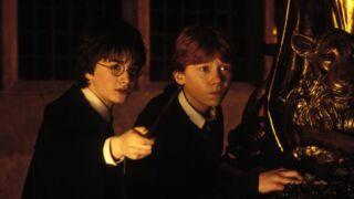 Vous souhaitez rejoindre le casting du prochain film spin-off d'Harry Potter ? Dépêchez-vous !
