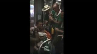 Euro 2016 : des supporters irlandais chantent une berceuse à un bébé dans le métro bordelais (VIDEO)
