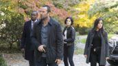 Blindspot (TF1) : où avez-vous déjà vu les acteurs ?