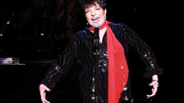 Liza Minnelli guest star dans Smash