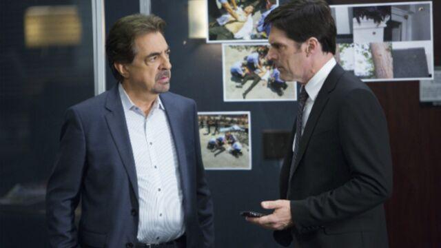 Esprits criminels (TF1) évite le Piège blanc de France 2