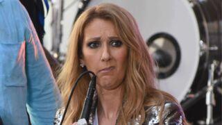 Céline Dion a une poupée à son effigie et elle est vilaine (PHOTOS)
