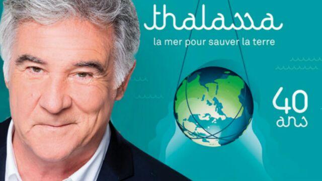 Pourquoi Thalassa (France 3) n'est pas diffusé ce 18 septembre