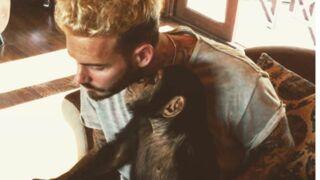 M. Pokora : ses photos adorables avec un lionceau et un singe (PHOTOS)