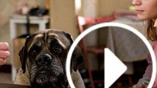 En Famille : Suite au décès de Volney, qui est le nouveau Pupuce ? (VIDEO)