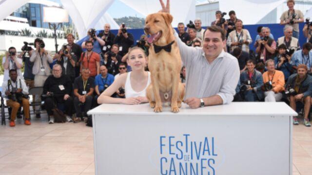 CANNES 2014 : des chiens au top, le Palais se vide