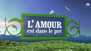 Audiences : M6 devance légèrement TF1 avec L'Amour est dans le pré
