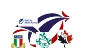 Coupe du monde de rugby : Le coq, le trèfle ou le chêne... Découvrez les emblèmes des équipes de la Poule D