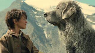 Belle et sébastien (M6) : Quand les chiens font leur star au cinéma (36 PHOTOS)