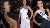 Shy'm, Ayem, Miss France... Le tapis rouge des NRJ Music Awards (PHOTOS)