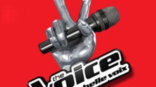 Exclusif. The Voice Kids sans Mika... mais avec Louis Bertignac !