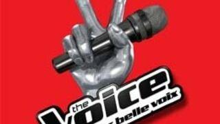 The Voice 3 : Kylie Minogue, Pascal Obispo... Tous les assistants des quatre coachs !