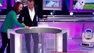 Zapping jeux : une candidate très maniaque, le complexe de Laurence Boccolini... (VIDEO)