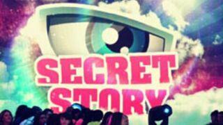 Secret Story 7 : retrouvez Alexia, Anaïs, Gautier et Vincent sur Twitter